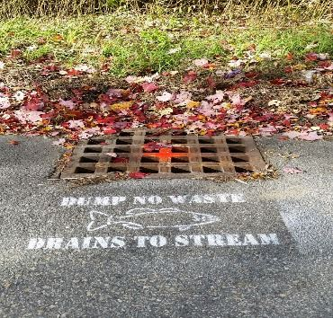 Stenciled Storm Drain